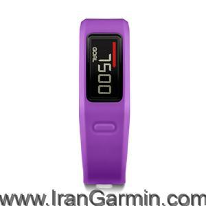vivofit purple